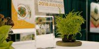 United States' National Restaurant Association announces FABI and KI award winners