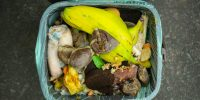 Double down on reducing food waste